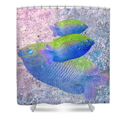 Shower Curtain featuring the photograph Nautical Beach And Fish #3 by Debra and Dave Vanderlaan