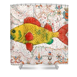 Shower Curtain featuring the painting Nautical Treasures-c by Jean Plout