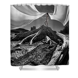 Shower Curtain featuring the photograph Nautilus by Dario Infini
