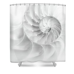 Shower Curtain featuring the photograph Nautilus Shell In High Key by Tom Mc Nemar