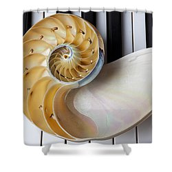 Nautilus Shell On Piano Keys Shower Curtain by Garry Gay