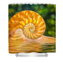 Nautilus Shell Submerged In Water Shower Curtain