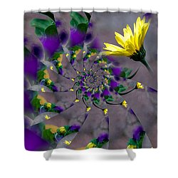 Nautilus Swirls Shower Curtain