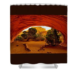 Navajo Arch Shower Curtain