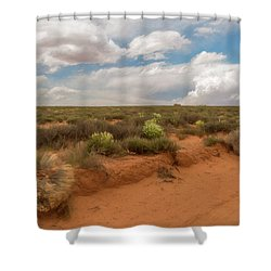 Navajo Reservation Shower Curtain