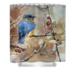 Near Spring Shower Curtain by Monte Toon