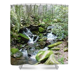 Near The Grotto Shower Curtain by Joel Deutsch
