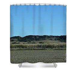 Shower Curtain featuring the photograph Nebraska Corn Field by Mark McReynolds