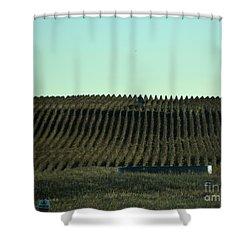 Shower Curtain featuring the photograph Nebraska Corn Rows by Mark McReynolds