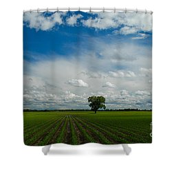 Nebraska Cornfield Shower Curtain