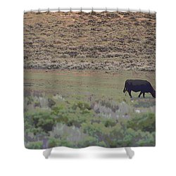 Nebraska Farm Life - The Farm Shower Curtain