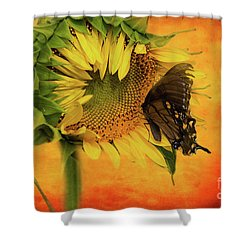 Nectar Time Shower Curtain by Geraldine DeBoer