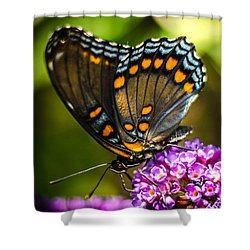 Butterfly Beauty  Shower Curtain by Bruce Pritchett