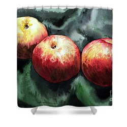 Nectarines Shower Curtain by Joey Agbayani