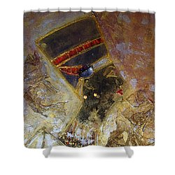 Nefertiti Shower Curtain