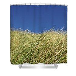 Nehalem II Shower Curtain