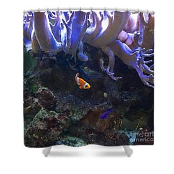 Nemo Look Alike Shower Curtain