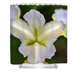 Neon Petals Shower Curtain