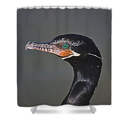 Neotropic Cormorant Shower Curtain