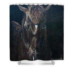 Nervous Colt  Milltown Fair Shower Curtain by Pauline Sharp