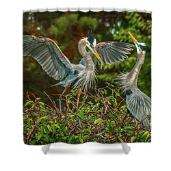 Nest Landing Shower Curtain