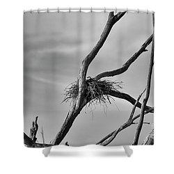 Nested Shower Curtain by Douglas Barnard