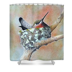 Shower Curtain featuring the drawing Nesting Anna by Phyllis Howard