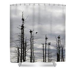 Nesting Blue Herons Shower Curtain by Erin Paul Donovan