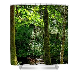 Nestucca River 3039 12x18 Shower Curtain by Jerry Sodorff