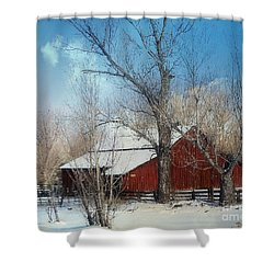 Nevada Barn In The Winter In Color Shower Curtain