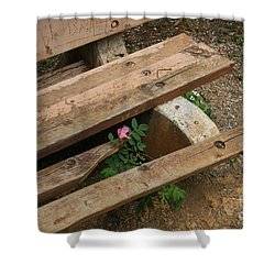 Never Fading Nature Shower Curtain by Mary Mikawoz