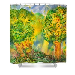 Shower Curtain featuring the painting Never Give Up On Your Dreams by Susan D Moody