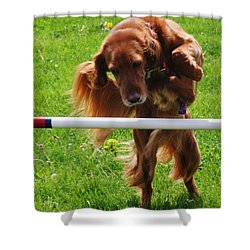 Shower Curtain featuring the photograph Never Give Up by Vadim Levin