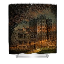 Nevermore Shower Curtain by Fran J Scott