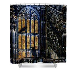 Shower Curtain featuring the photograph Nevermore by LemonArt Photography