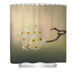 New Awakening Shower Curtain