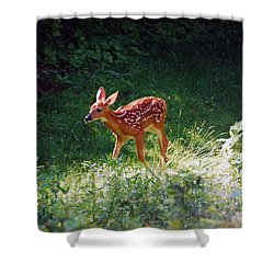 New Backyard Visitor Shower Curtain