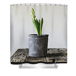 Shower Curtain featuring the photograph New Beginings by Kim Hojnacki