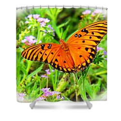 New Beginnings By Matthew Shower Curtain