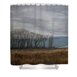 New Buffalo Marsh Shower Curtain