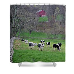 Shower Curtain featuring the photograph New England Spring Pasture Square by Bill Wakeley