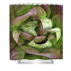 New Lettuce Shower Curtain by Joseph Skompski