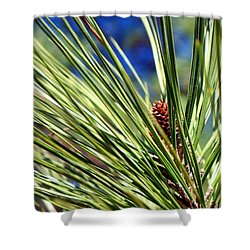 Shower Curtain featuring the photograph New Life by Betty Northcutt