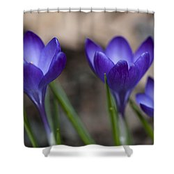 New Life Shower Curtain by Dan Hefle