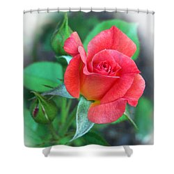 New Life In A Coral Rosebud Shower Curtain