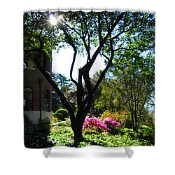 Shower Curtain featuring the photograph New Mercies by Linda Mesibov