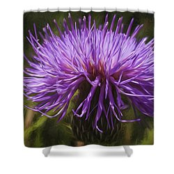 New Mexican Thistle Shower Curtain