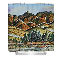 New Mexico Back Country Shower Curtain