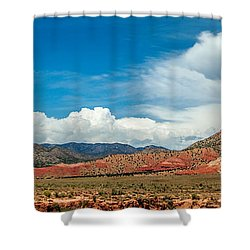 Shower Curtain featuring the photograph New Mexico by Gina Savage