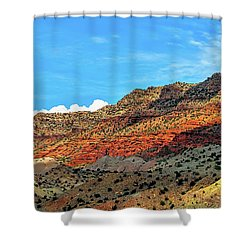 New Mexico Landscape Shower Curtain by Gina Savage